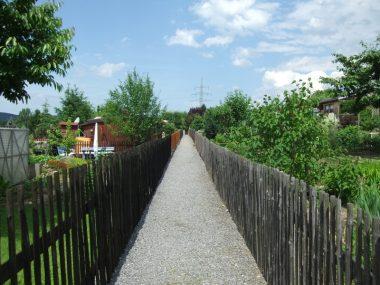 Unterer Weg in der Gartenanlage Bergidyll Flöha