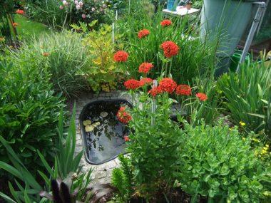Impressionen Gartenanlage Bergidyll Flöha