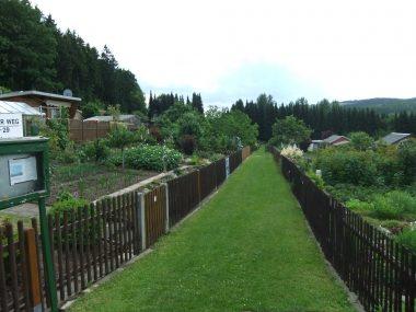 Oberer Weg in der Gartenanlage Bergidyll Flöha
